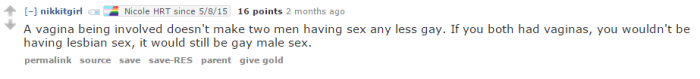 vagina sex is gay